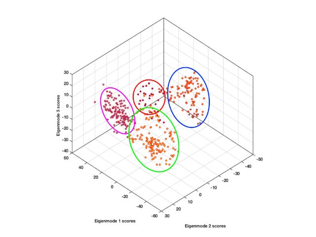 Foundations of Computational Biology with MATLAB