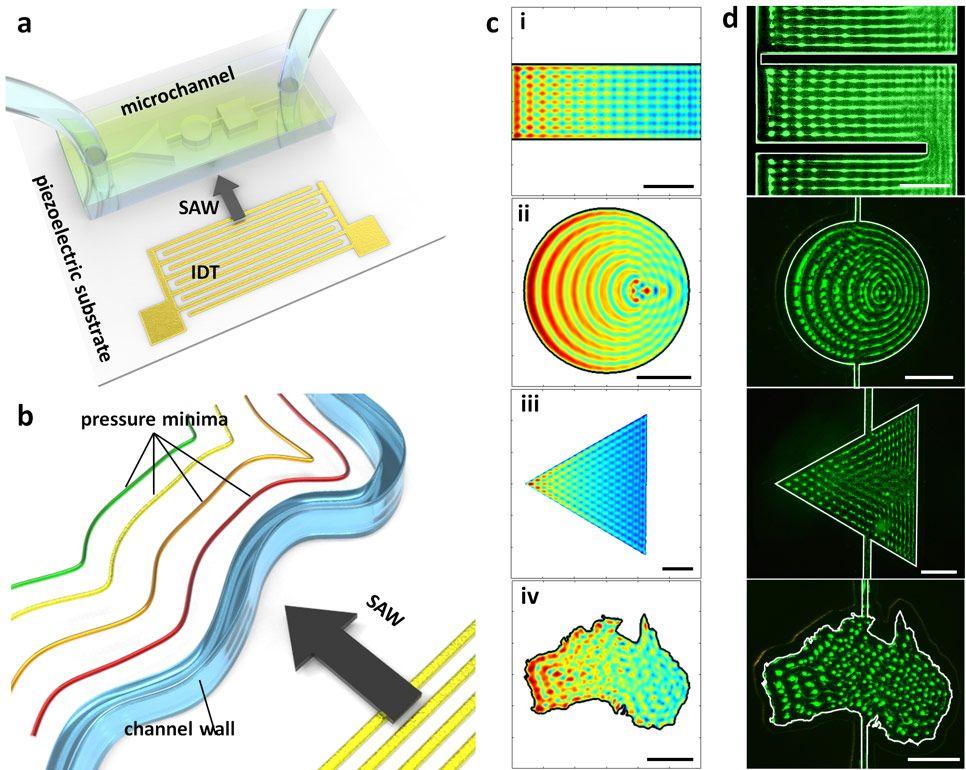 Figure 1. Acoustic patterning in microchannels.