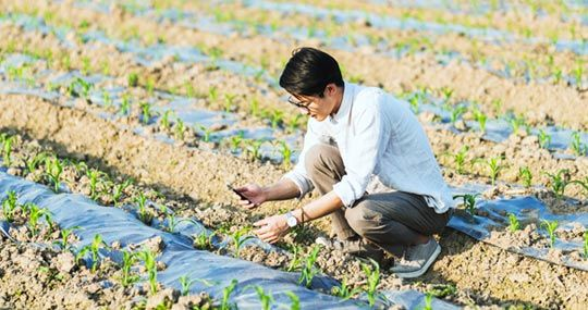 ThingSpeak for Smart Farming